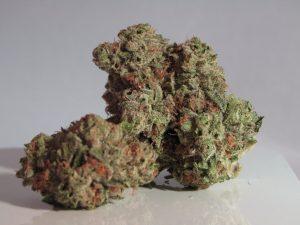 marijuana barcelona